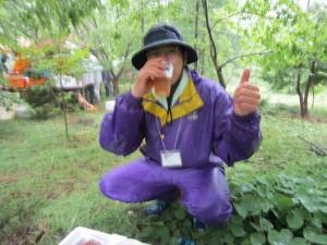 「大崎八幡宮 文化財の杜」育林事業参加しました。
